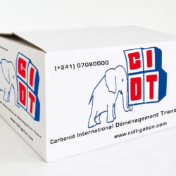 carton cidt Gabon déménagement International
