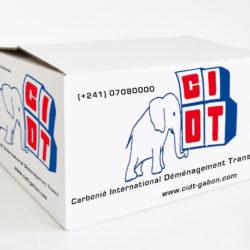 carton cidt Gabon déménagement International