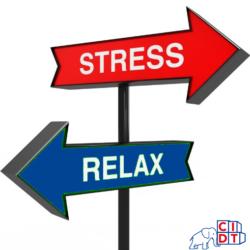 Stop au stress du déménagement avec CIDT Gabon